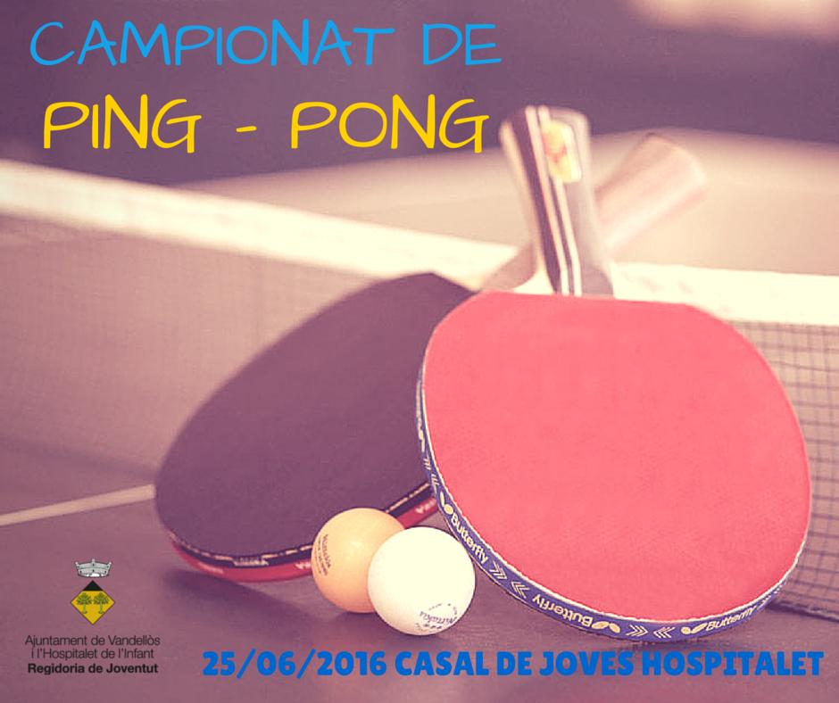 CAMPIONAT DE PING - PONG (3)