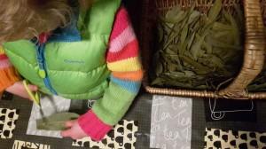 taller etnobotànic infants (5)