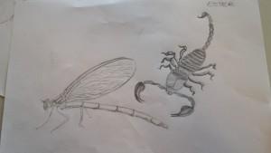 ilustracio natura4